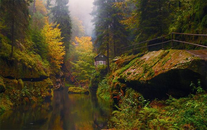 Маленький уютный домик спрятанный далеко в лесу.