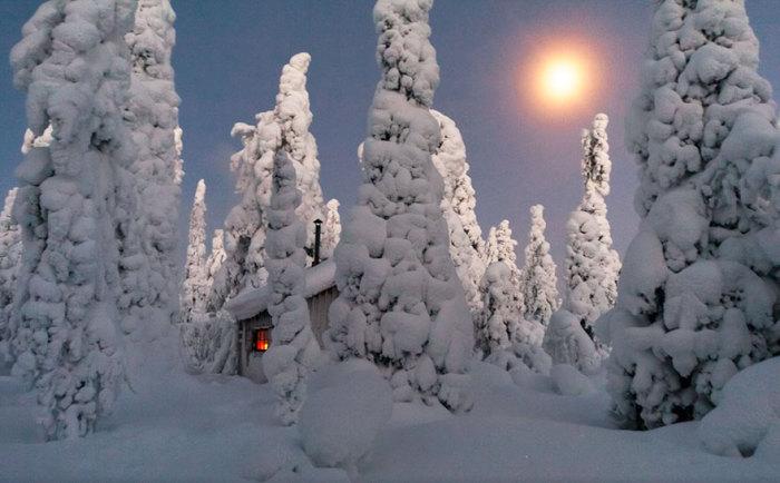 Белоснежные шапки на деревьях и доме сверкают при лучах вечернего солнца.