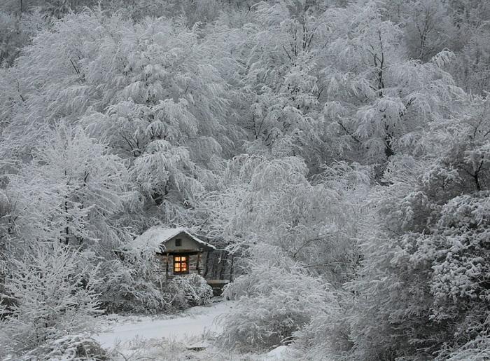 Фотография избушки и зимнего леса переносит нас в сказку.