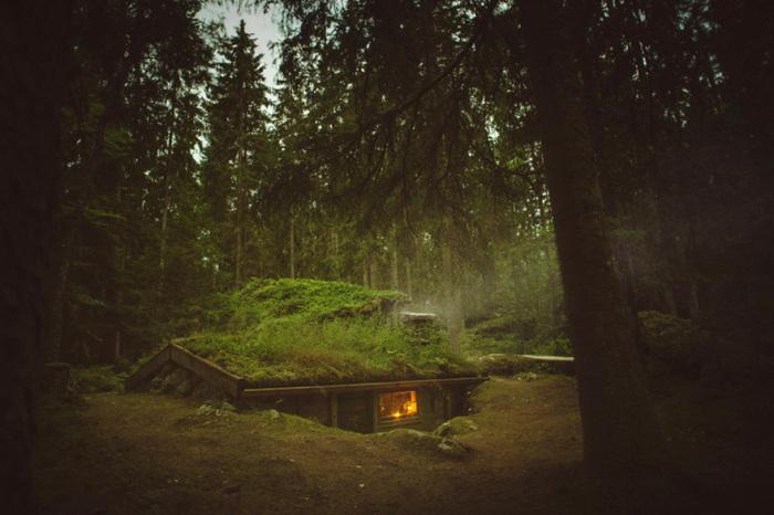 Небольшая землянка в чаще леса.