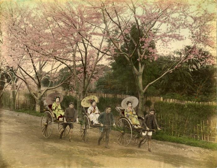 Считается, что к 1872 году в Токио было уже около 40000 рикш и это был основной вид общественного транспорта в Японии.