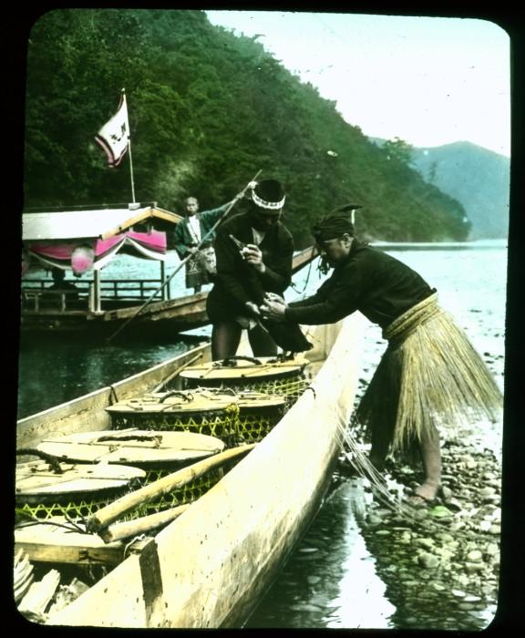 Специально обученные бакланы используются для ловли пресноводной рыбы.