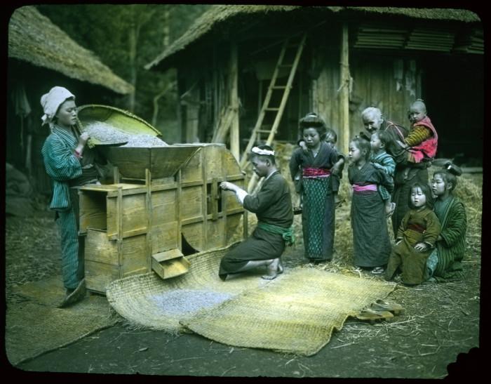 Специальный деревянный аппарат для просеивания.