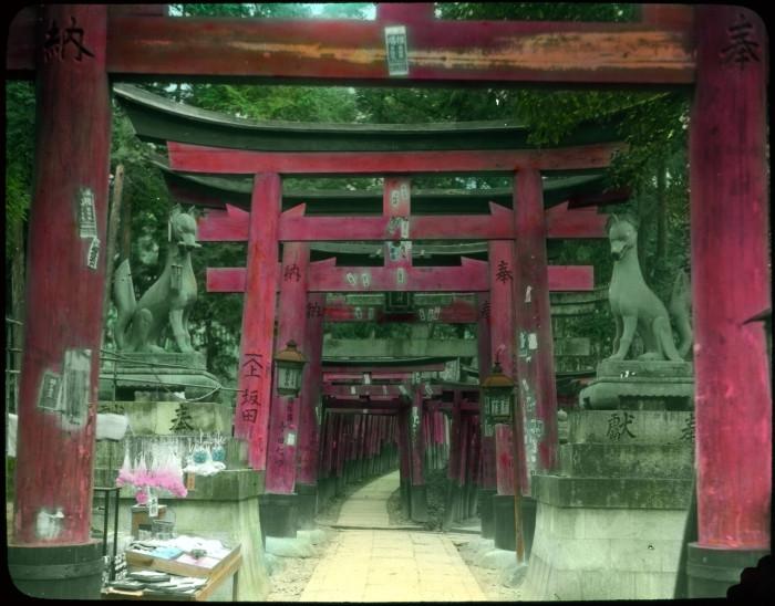 Визитная карточка храма - туннели из красных ворот Тории.