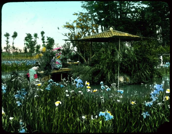 Удивительный сад огромного количества цветущих одновременно цветов.
