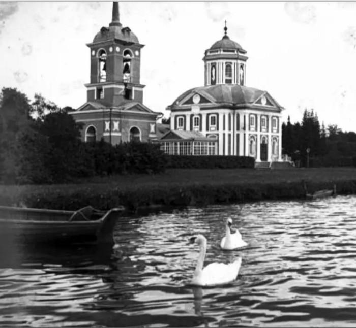 Силуэты и отражения птиц  увеличивали привлекательность пруда.