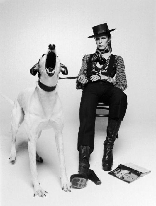 Дэвид Боуи в комбинезоне, шляпе и сапогах на высоком каблуке позирует для обложки 8-го студийного альбома «Diamond Dogs».