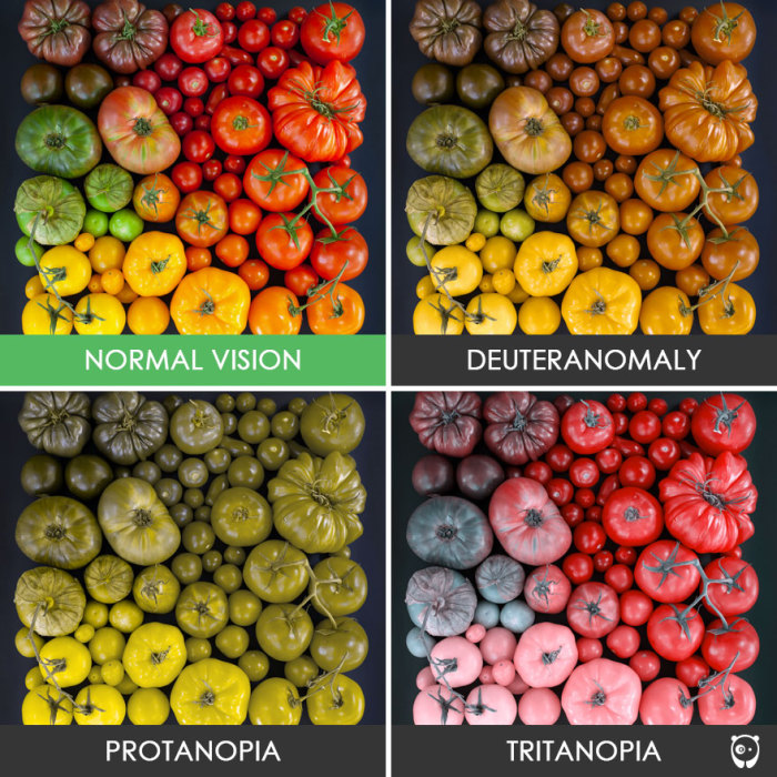 Много помидоров! И такие разные.