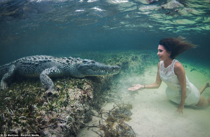 Итальянская любительница острых ощущений Роберта Манчино осуществила свою давнюю мечту поплавать с рептилиями в Мексиканском заливе.