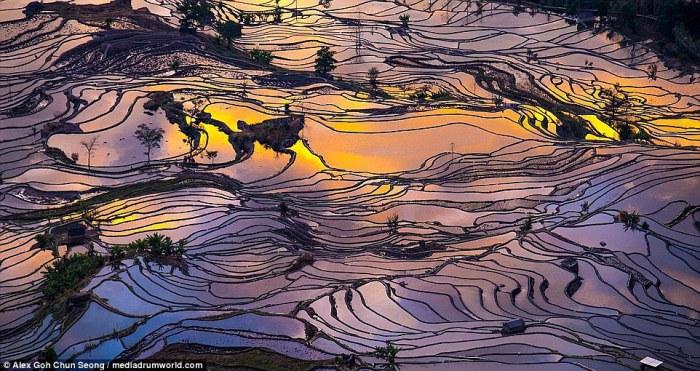 Фотограф Alex Goh Chun Seong.