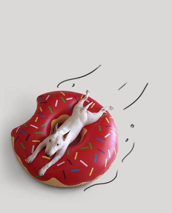 Прокачусь ка я на пончике...