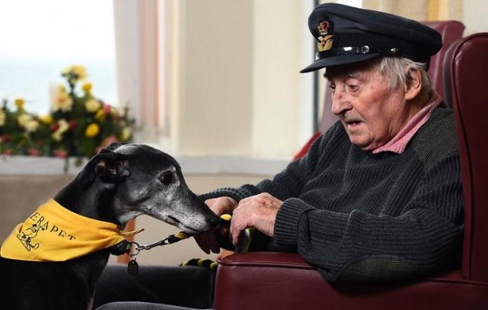 Победитель конкурса в номинации «Собаки-помощники» - Аласдэйр МакЛауд (Alasdair MacLeod), Великобритания.