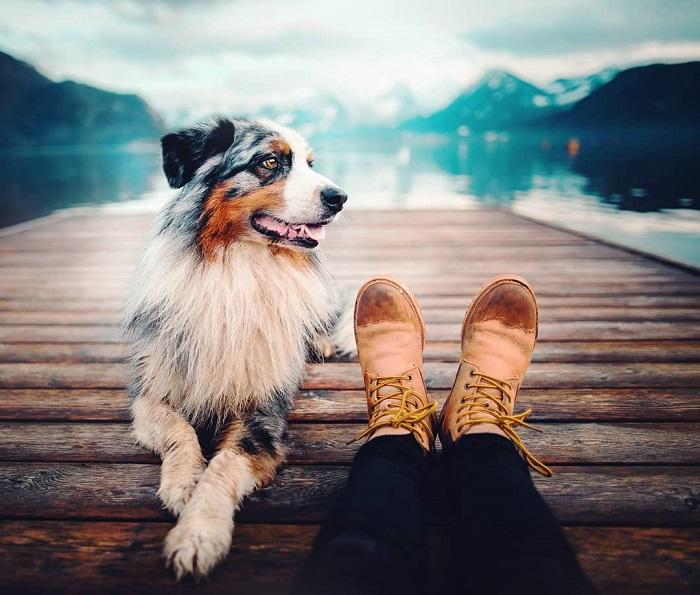 Кристина Квапилова (Kristyna Kvapilova) – 21-летний фотограф из Чехии - считает, что нет вернее друга, чем собака.