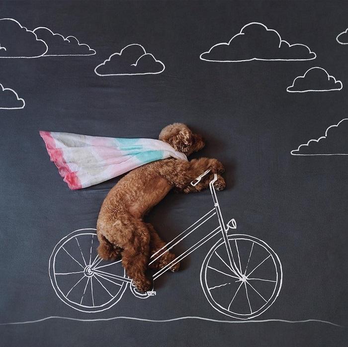 Рекомендую прогулки на свежем воздухе, особенно на велосипеде.
