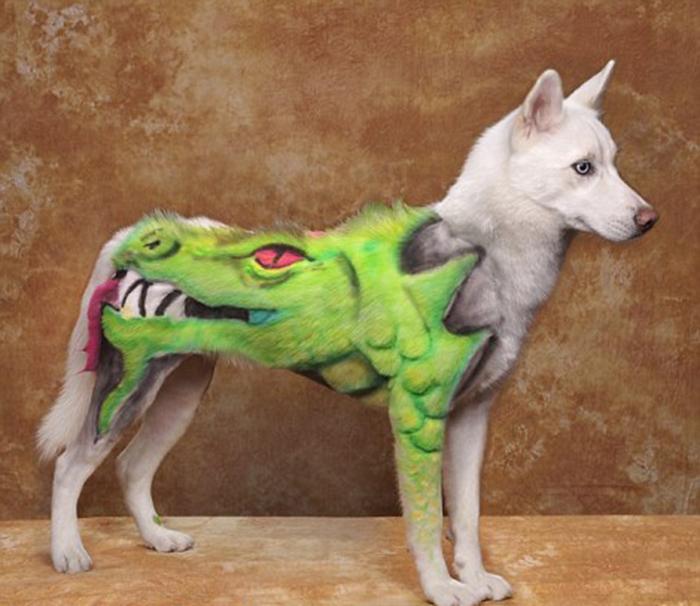 Дизайн дракона в творческом конкурсе по уходу за домашними животными в Пасадене, Калифорния.