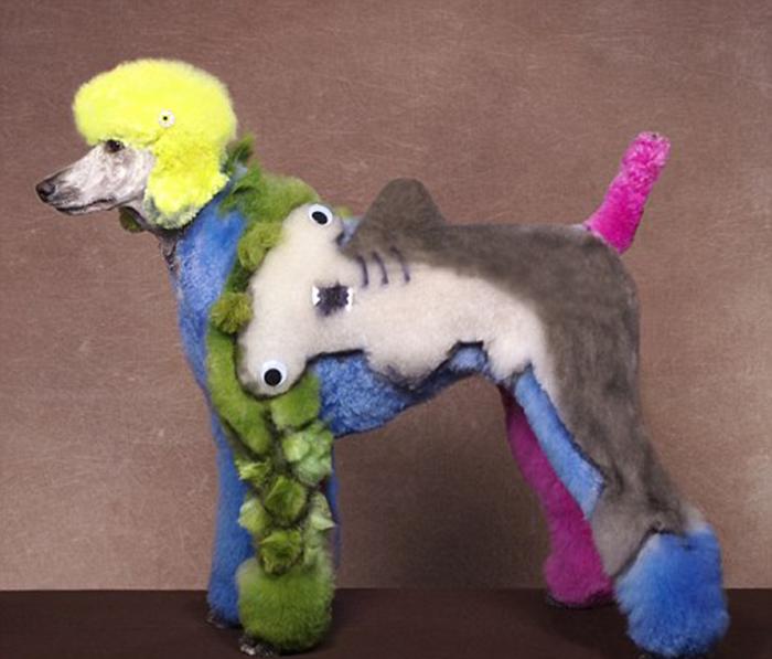 Собака с изображением акулы в творческом конкурсе в городе Херши, штат Пенсильвания.