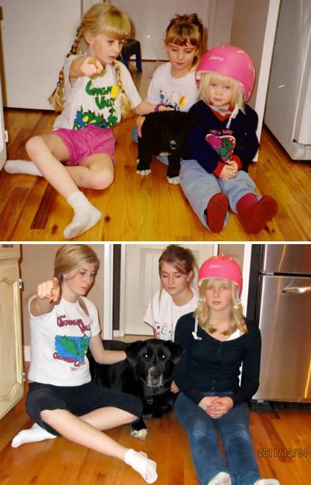 Наш любимый щенок с нами уже 11 лет.