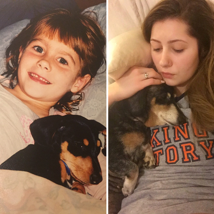 13 лет пес Винни радует свою хозяйку своим присудствием.