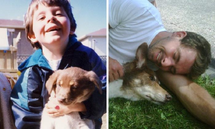 Трогательный момент прощания. Умирающий пес и его хозяин.