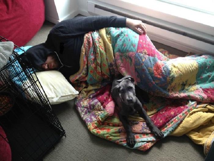 «Сказала своему парню, что не буду спать в одной постели с новым щенком…»