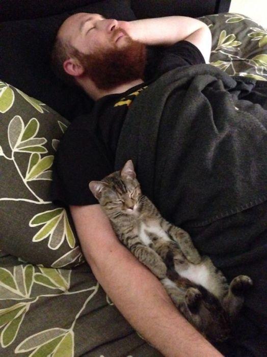 «Моя жена сделала эту фотографию, когда я спал с нашим котейкой».