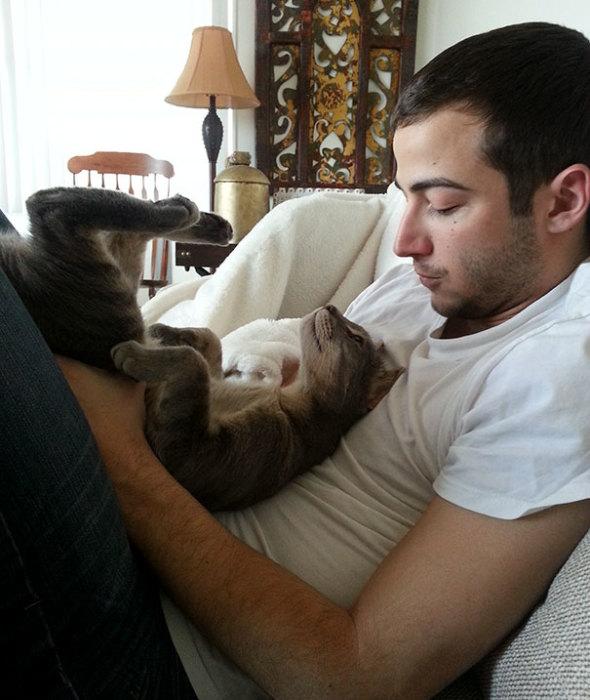 «Серьезный и милый момент, возникший между моим парнем и кошкой».
