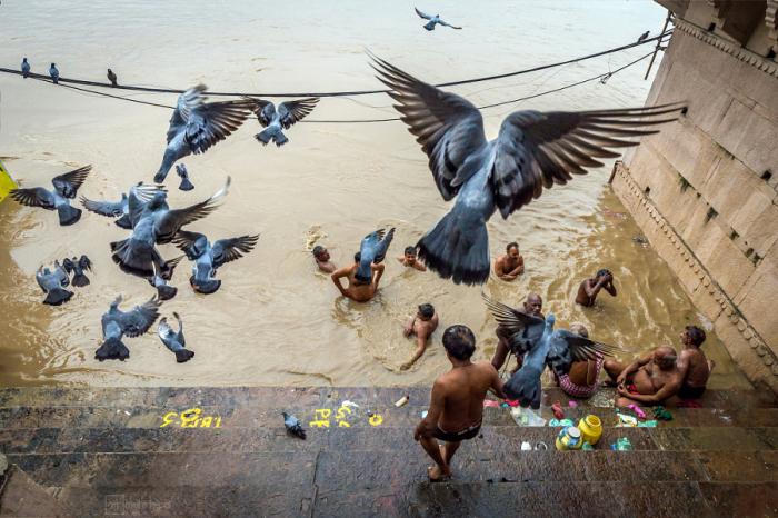 Индусы купаются ранним утром в реке. Автор фотографии: Мохи Тепал (Mohit Tejpal ).