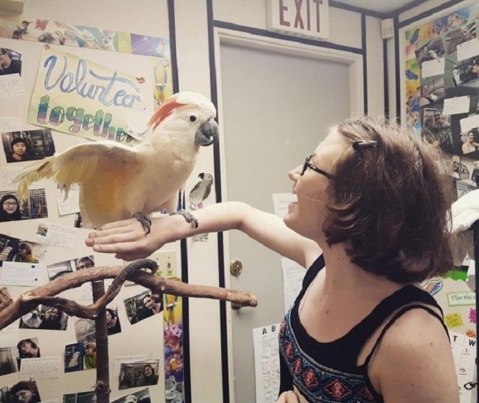 Попугай и девушка, страдающая на аутизм, нашли друг друга.