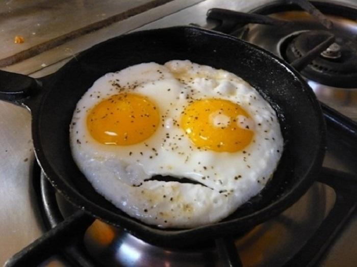 Эмоции, которые испытывают яйца в своей недолгой жизни.