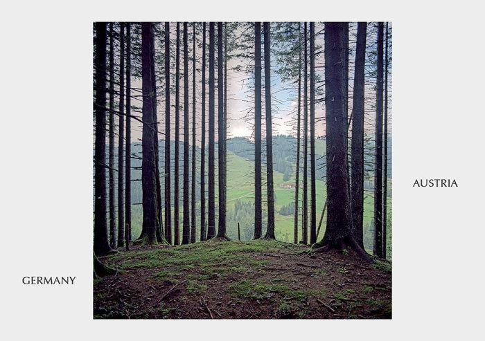 Пограничный столб в лесной глуши.