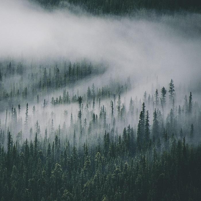 Место съемок: Национальный парк Банф, Альберта (Канада).