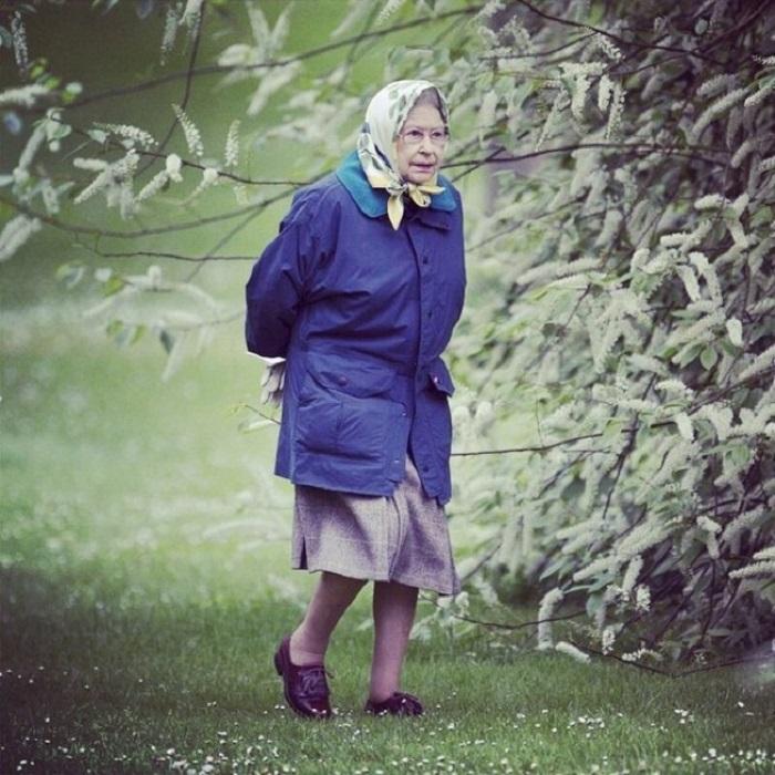 А присмотришься — королева Англии...