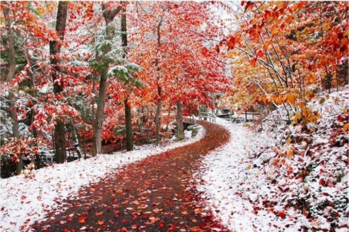 Осень и зима слились воедино.