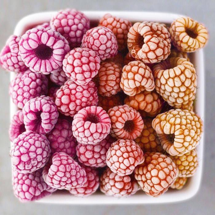 Разноцветная малина для создания ярких вегетарианских шедевров.