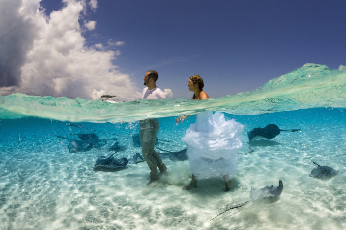 Необычная свадебная фотосъемка на Каймановых островах. Фотограф Jennifer Jo Stock.