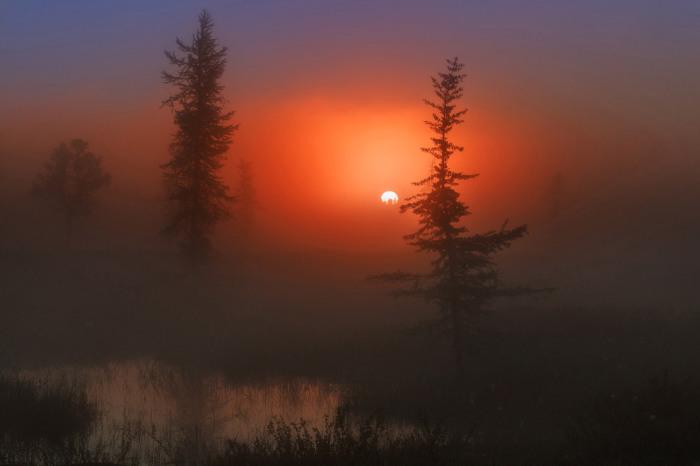 Утренний рассвет. Фотограф Kamil Nureev.
