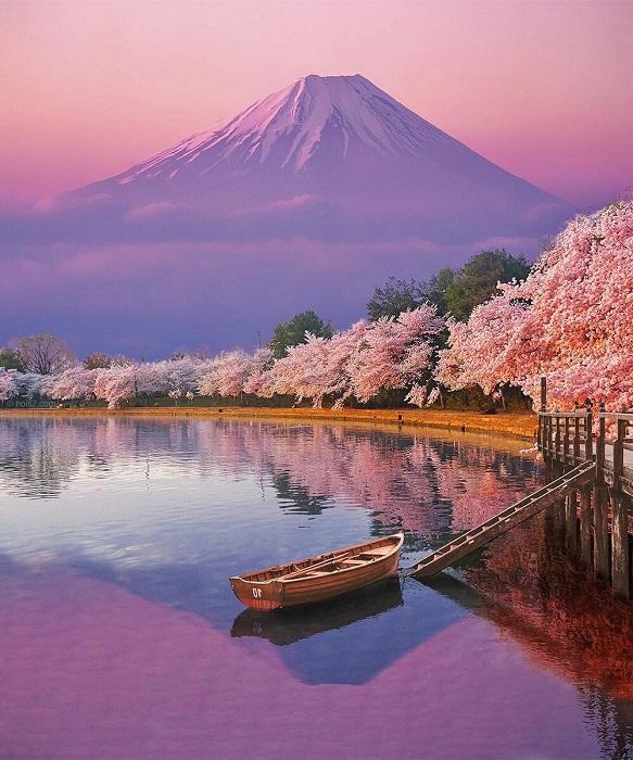 Цветущая вишня с пьяными ароматами так и манит в Страну восÑодящего солнца.