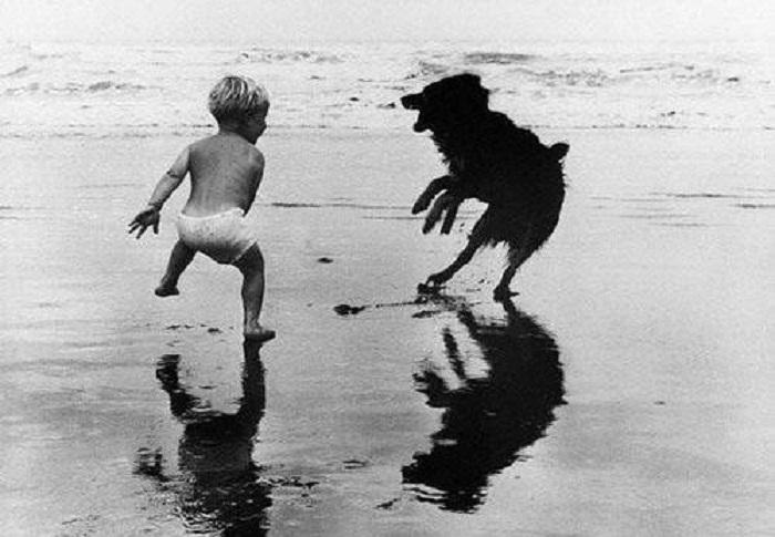 Мальчик беззаботно играет на берегу моря со своим четвероногим другом.