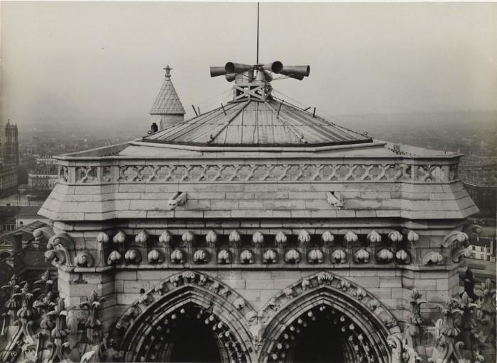 На башне Нотр-Дам де Пари.