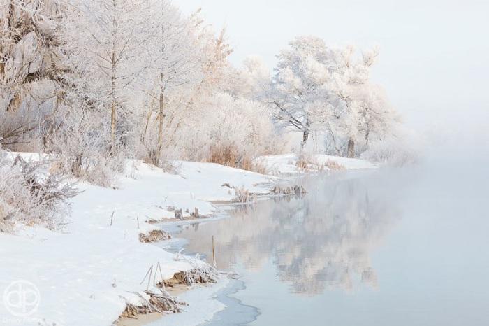 Фотограф Питенин Дмитрий.