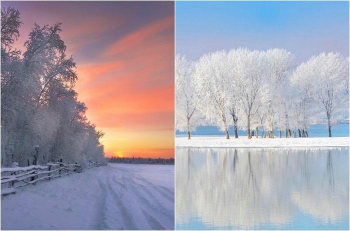 Неповторимые краски зимы.