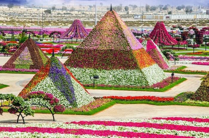 Из 45 видов завезённых цветов, возведены стены, пирамиды и башни.