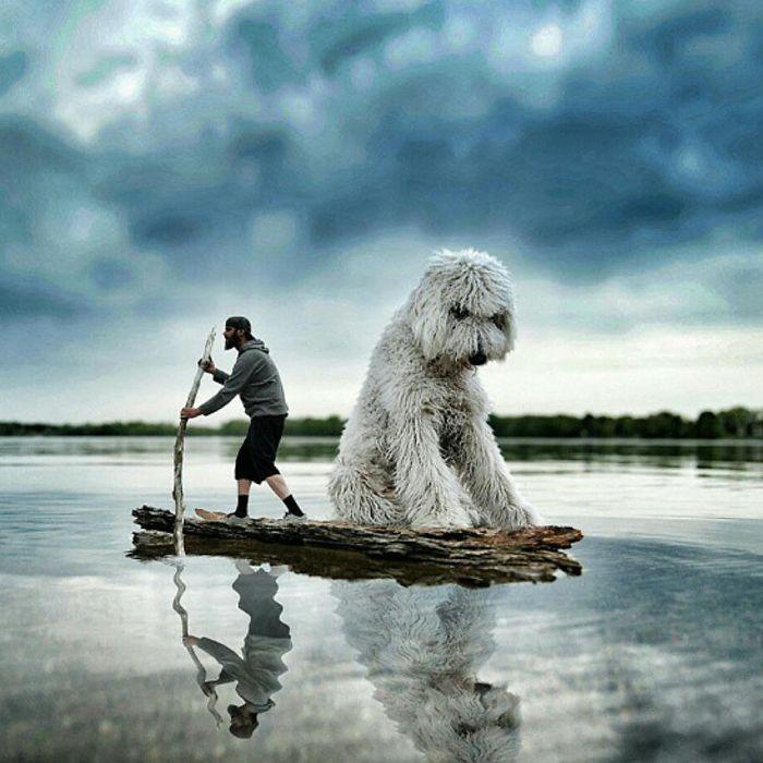 Американский фотограф Кристофер Клайн (Christopher Cline) создал необычную и забавную серию снимков со своим псом.