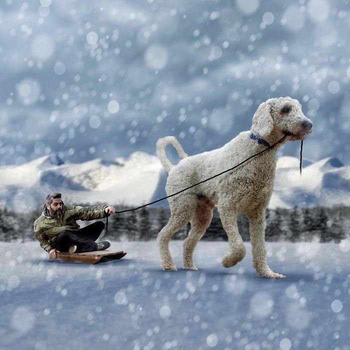 Гигантский пес вместе со своим хозяином отправляется на поиски новых снежных приключений!