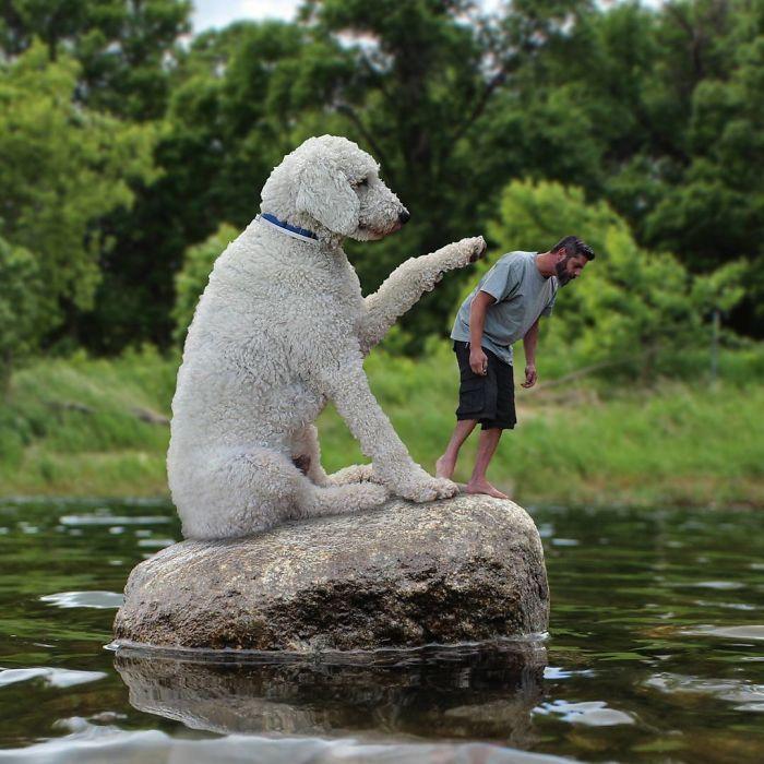 «Крис, я точно уверен, что мой мячик упал в воду именно в этом месте – смотри внимательнее!»