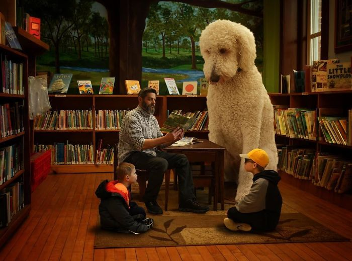 Неунывающий пес Джуджи стал для своего хозяина неиссякаемым источником вдохновения.