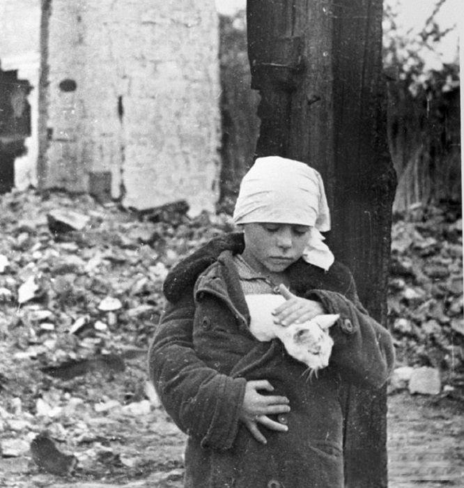 Девочка с котенком возле разрушенного дома. Смоленская область, октябрь 1941 года.