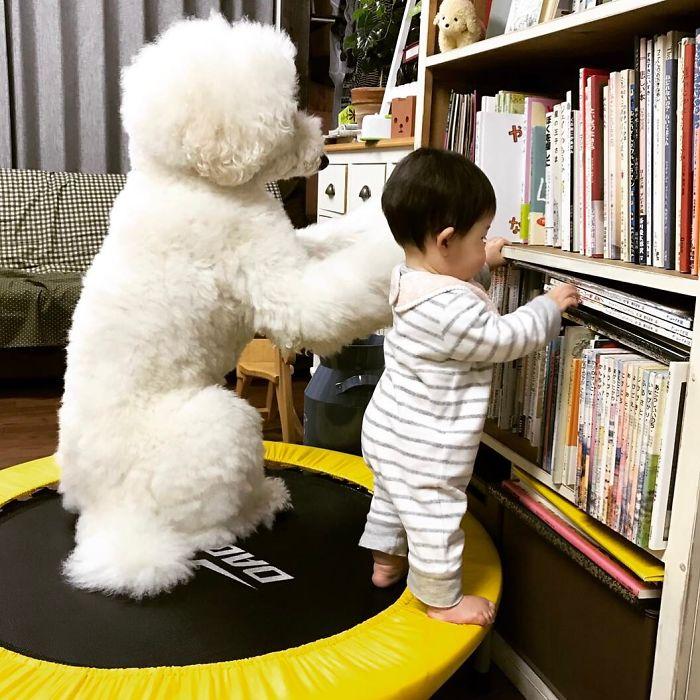 Выбор «сонной» детской книги – очень ответственное задание.