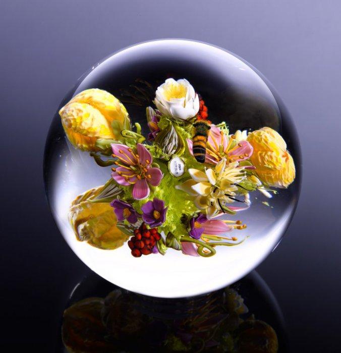 Пол Стэнкард мастерски показывает красоту мира растений.