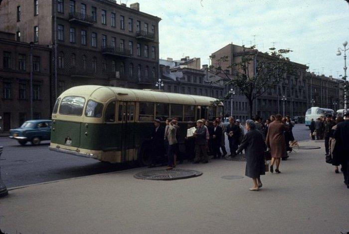 Автобусная остановка на Лиговском проспекте и горожане, которые спешат занять сидячие места.